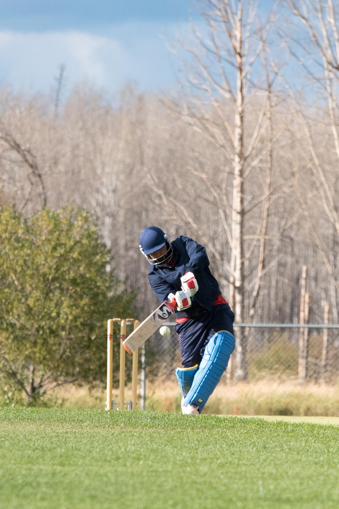 Cricket-2091.jpg