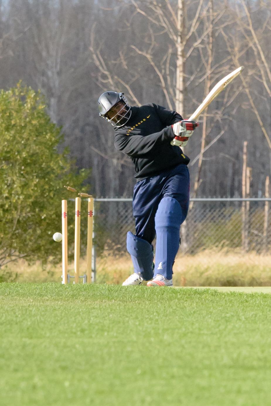 Cricket-2384.jpg