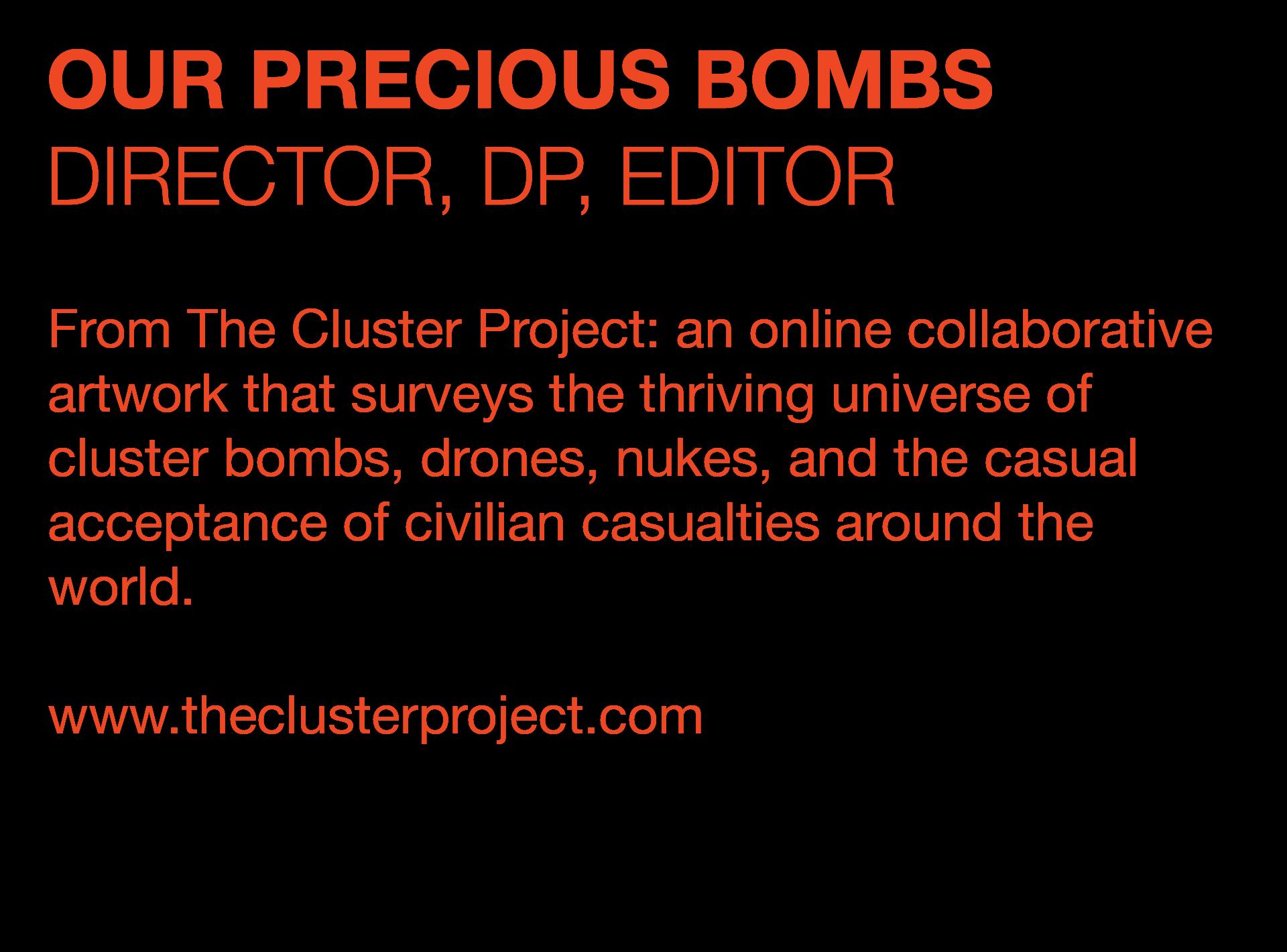 Our Precious Bombs Description.png