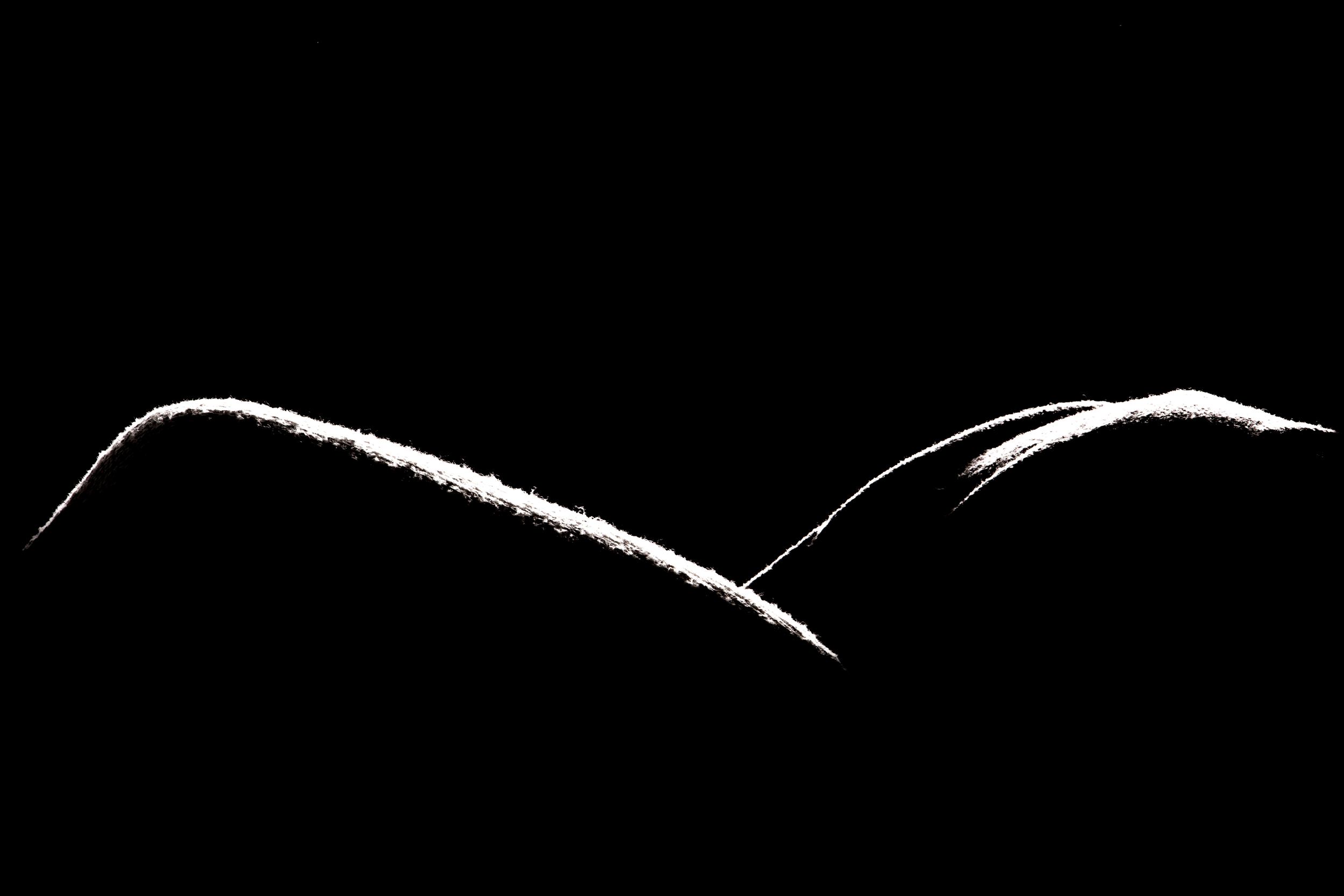 Title: Forme 05 Medium:Archival Pigment Print Dimension: 20 × 30 in (50.8 cm × 76.2 cm) Edition: 1 of 2, with 1 AP