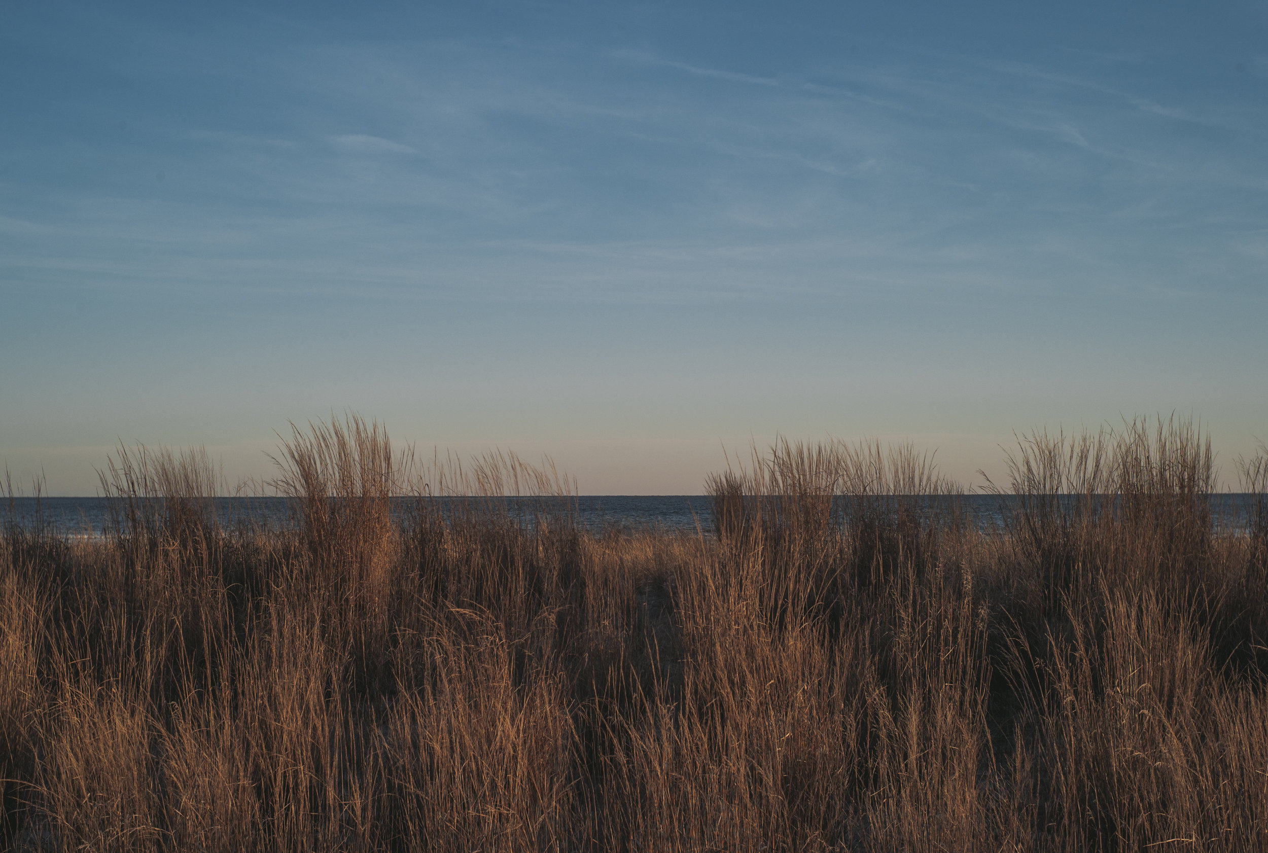 Title: Grass Fence Location:Atlantic City, New Jersey Year: 2017 Medium:Chromogenic Color Print