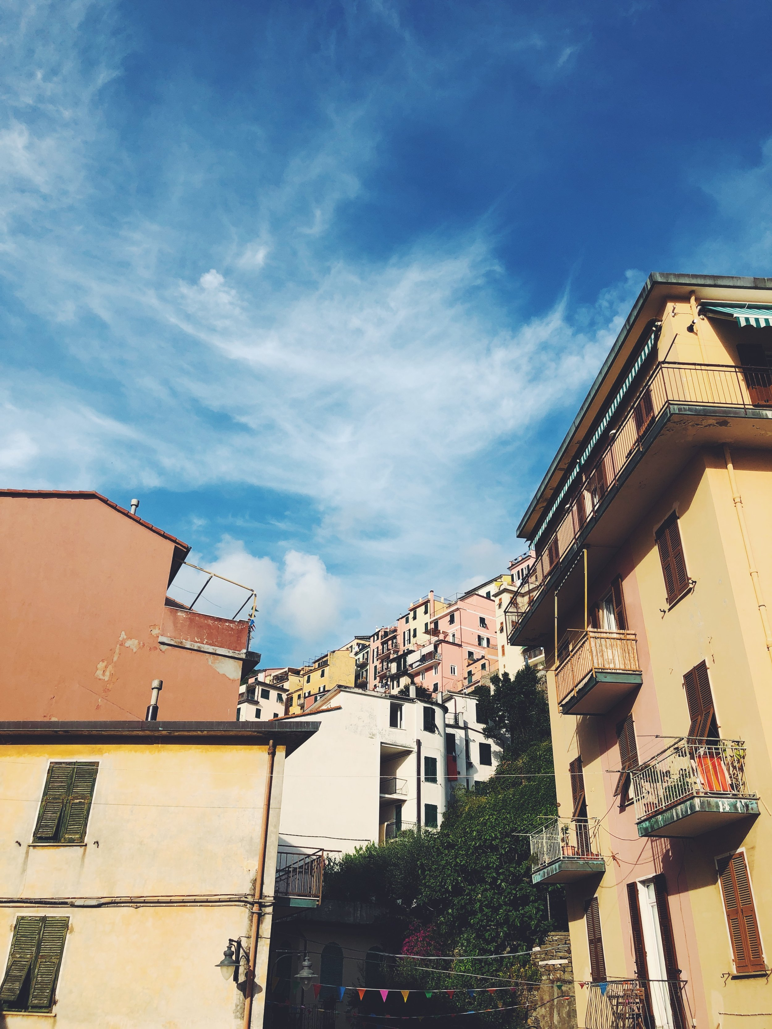 From the Streets of Manarola