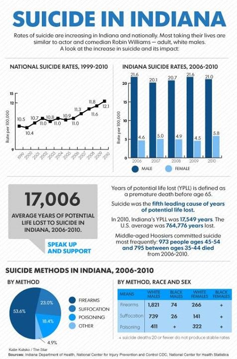 2014 | IndyStar infographic