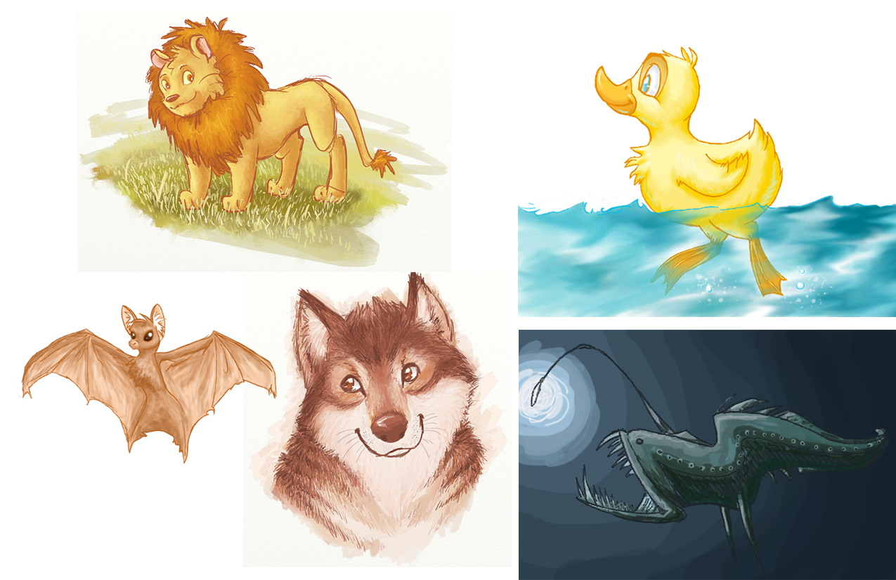 animal_concepts2.png