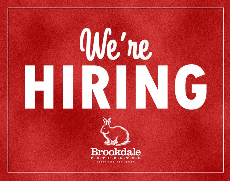 now-hiring-brookdalepet (1).jpg