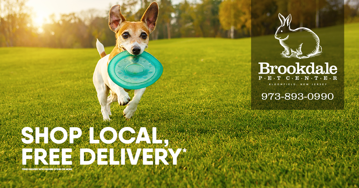 local-delivery-ad.png