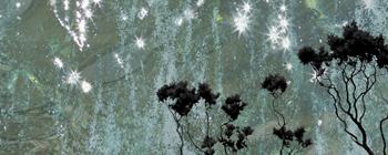 StarryNight_webslice.jpg