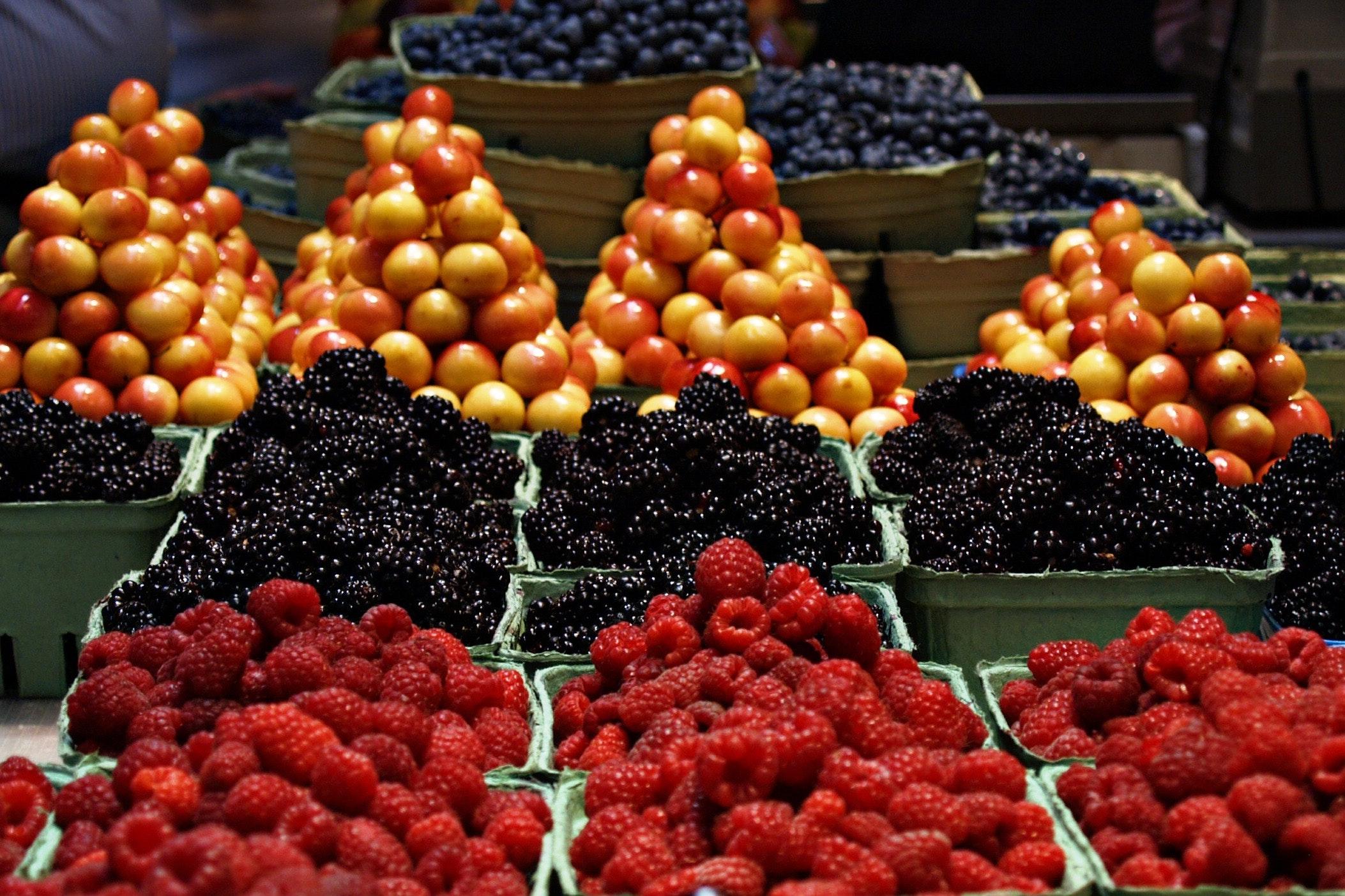 bunch-cherries-colorful-86459.jpg