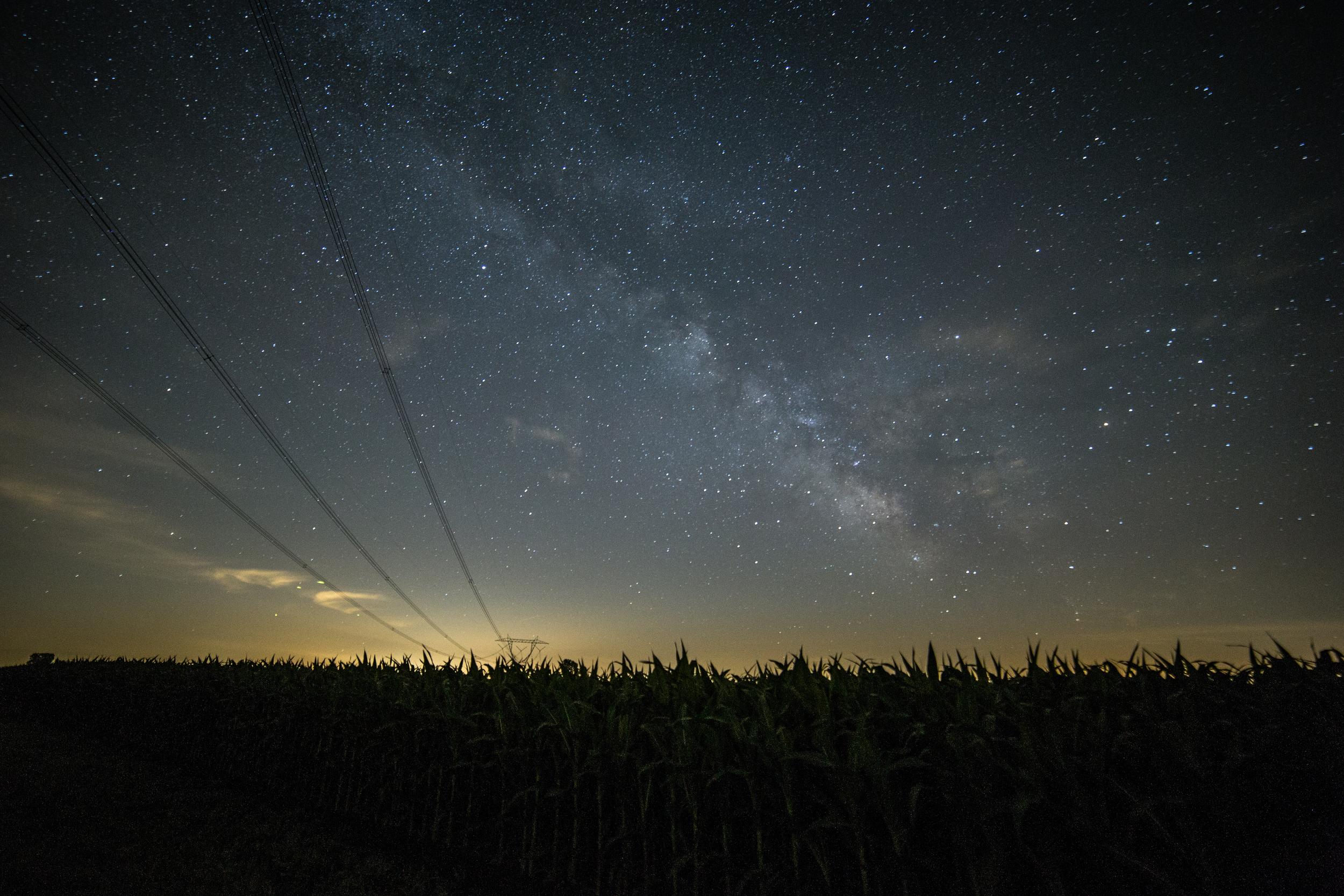 Buzz Milky Way