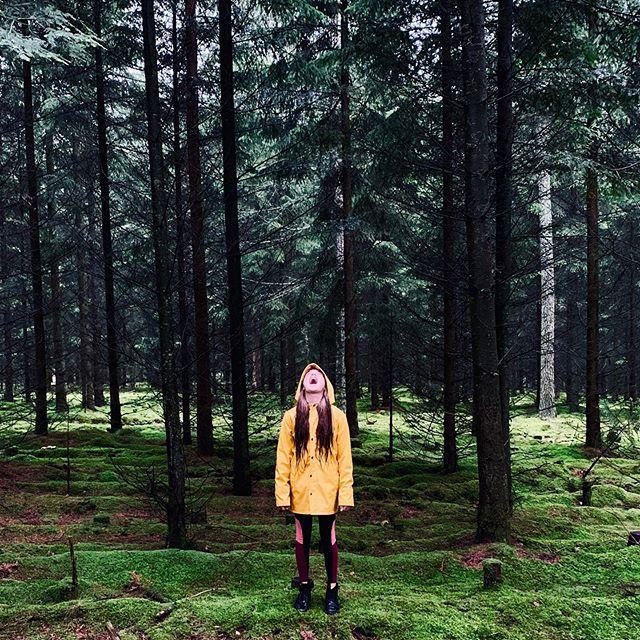 Drinking rain ☔️🌨 #rain #forest #raincoat