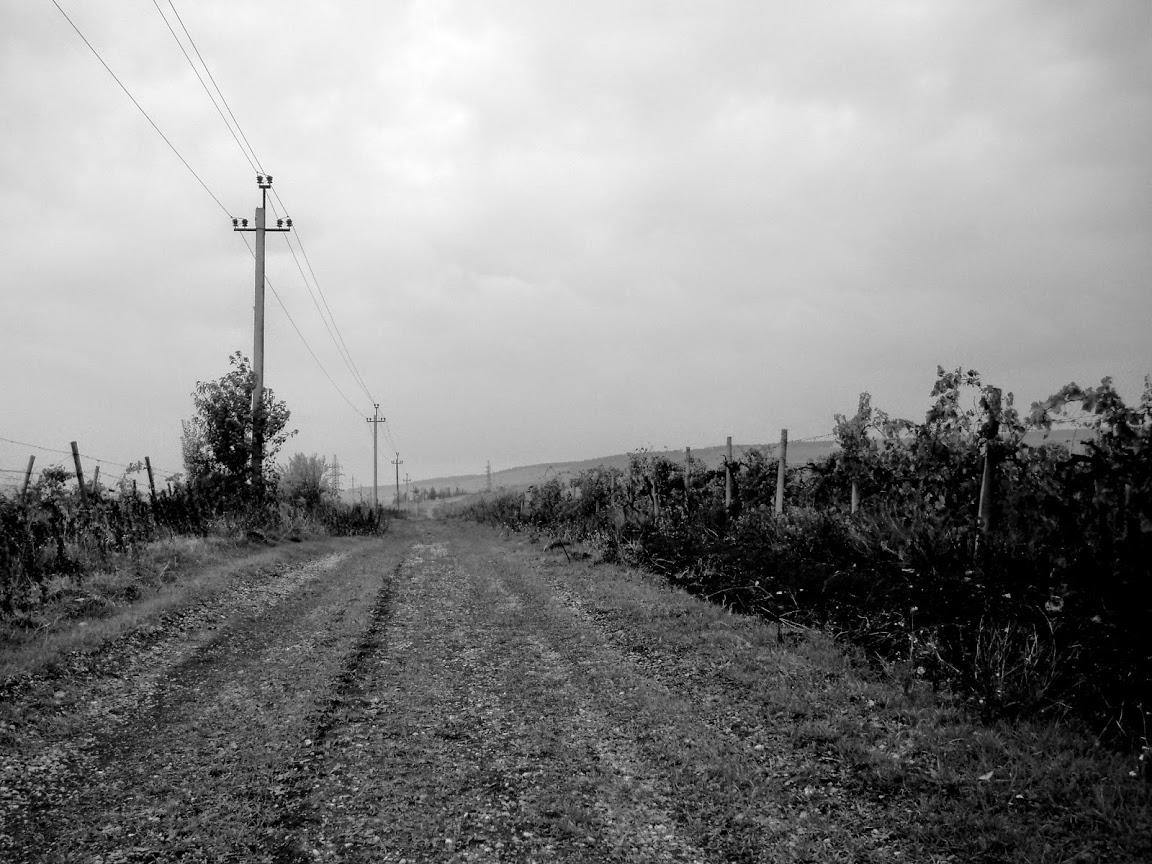 Image near to the same spot by Sveta, 2014