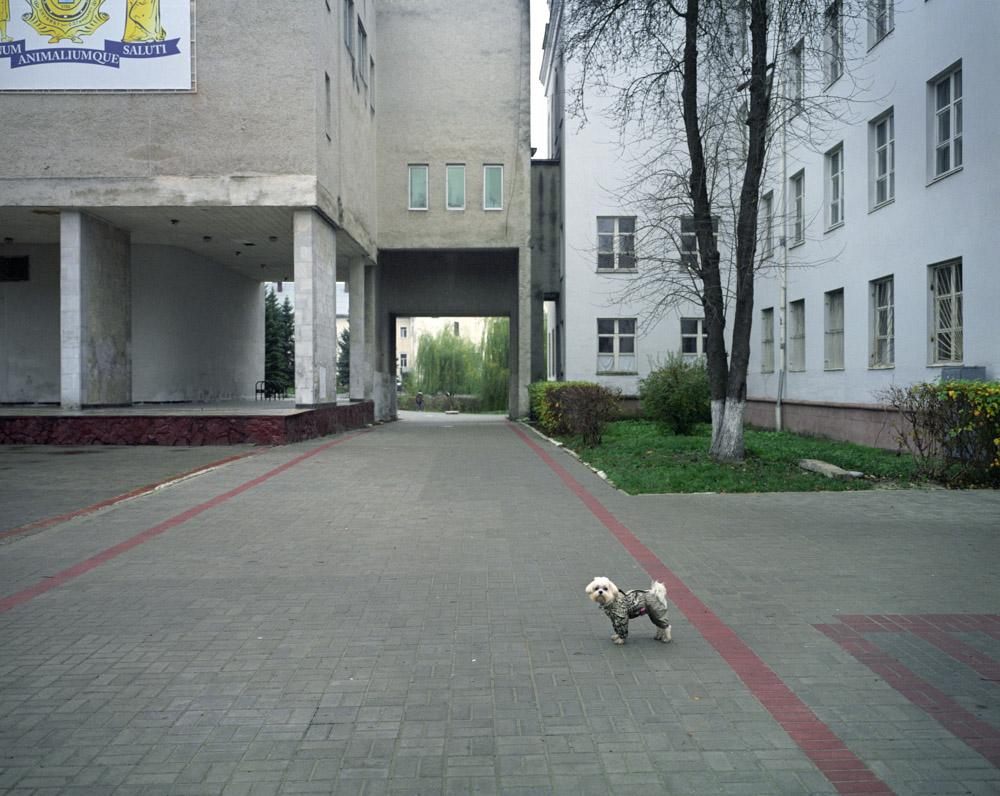 LvivBallet69.jpg