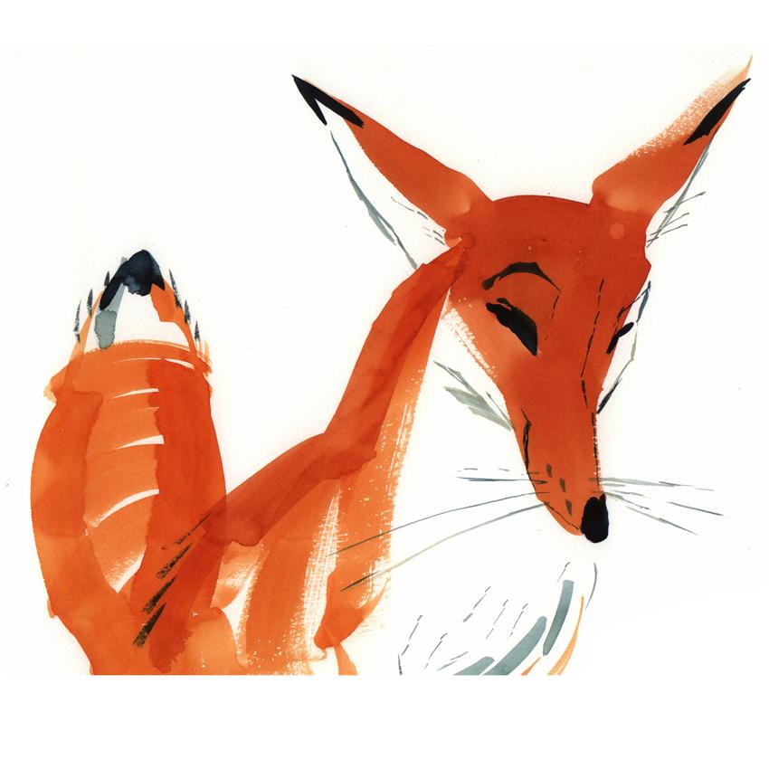 fox1-4X4.jpg
