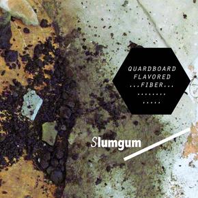 images-albums-Slumgum_-_Quardboard_Flavored_Fiber_-_20110502182644527.w_290.h_290.m_crop.a_center.v_top.jpg