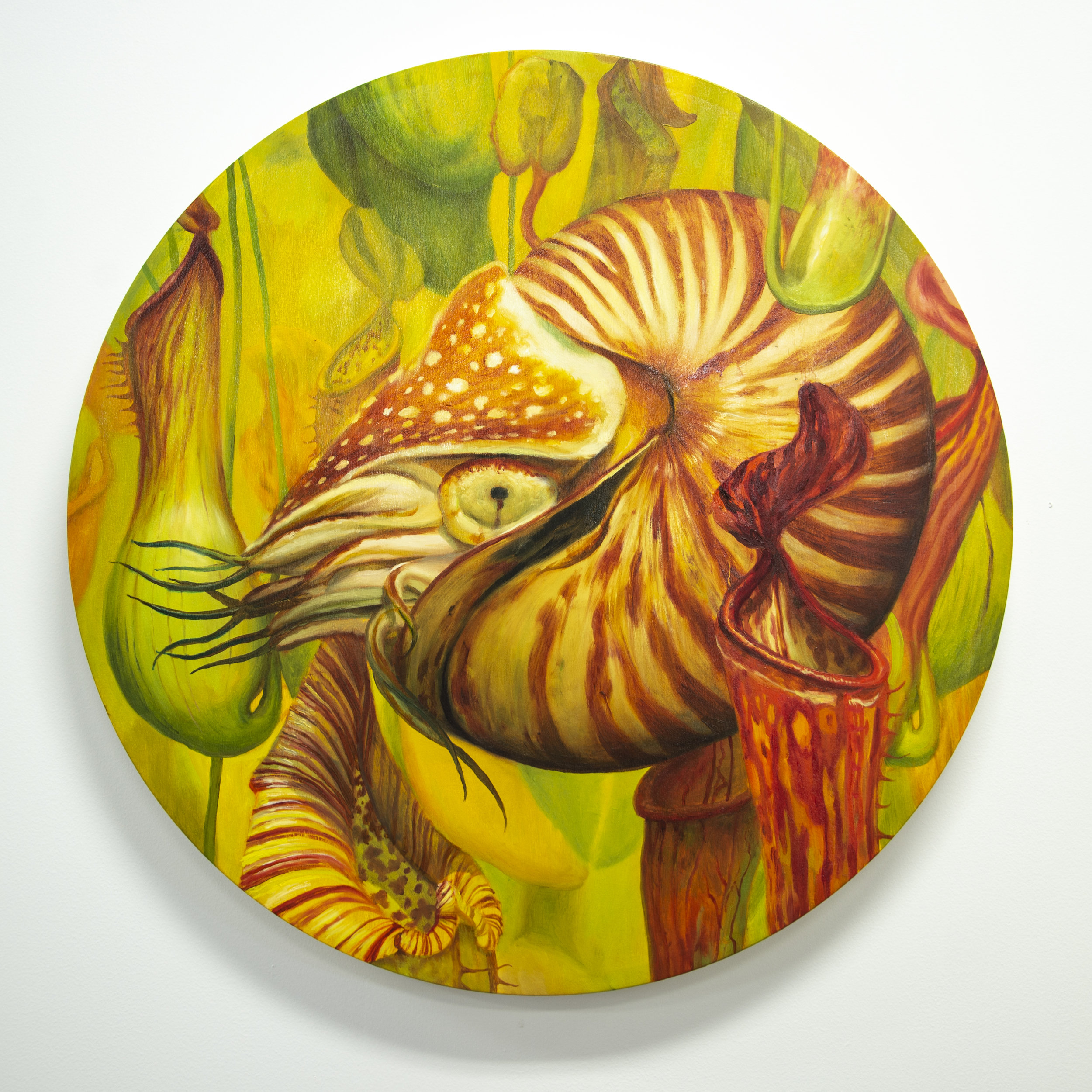 Martin Wittfooth | As above so below | 30 inches | 2019