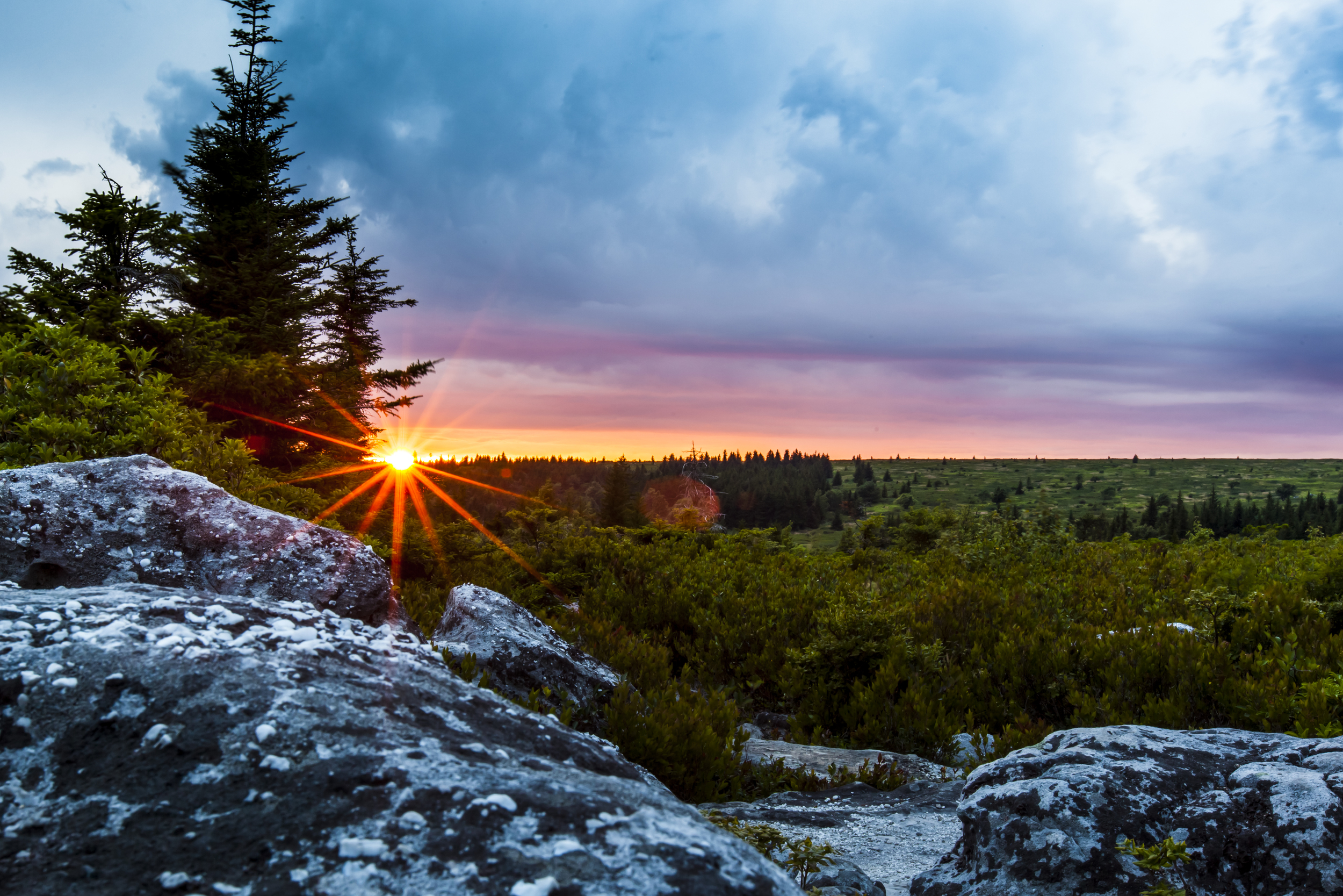 Dolly Sods Sunset