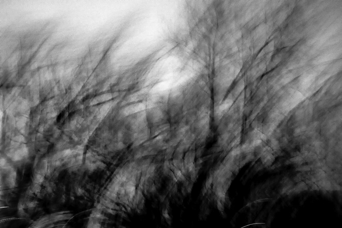 Midnight Winds