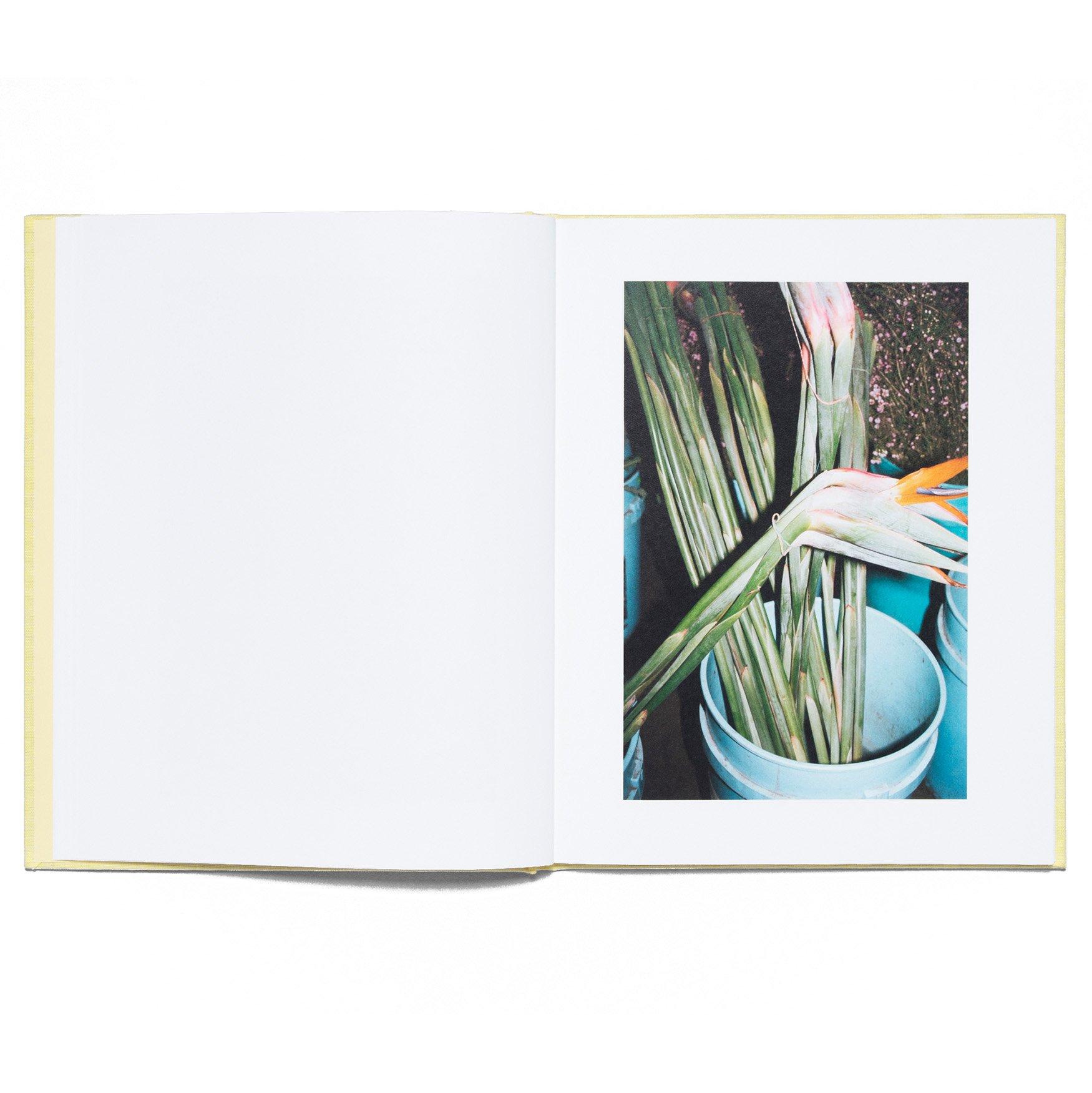 LA_Flower_Market_Book_Detail_6_1920x.jpg