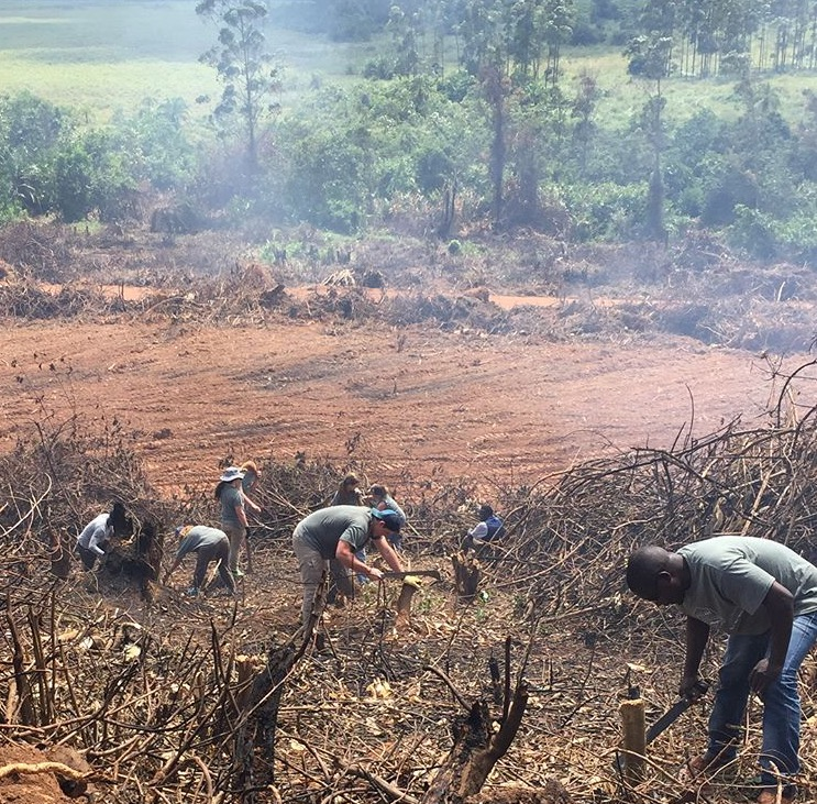 Sozo interns helping clear the land