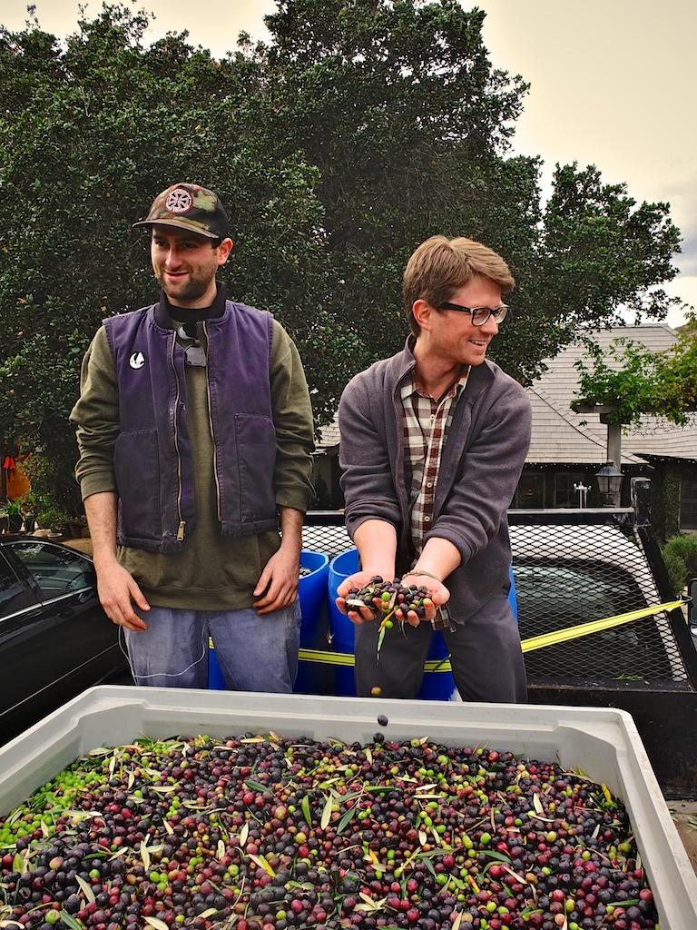 harvest2012 12.jpg