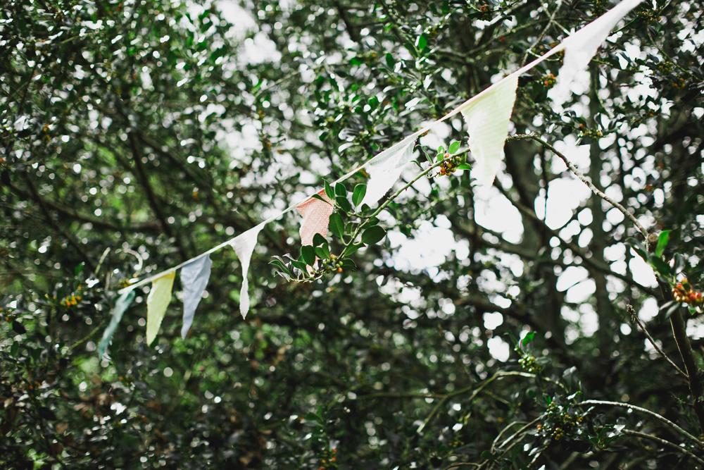 901-alberton-house--auckland-wedding--mount-albert--auckland-wedding-photographer.jpg
