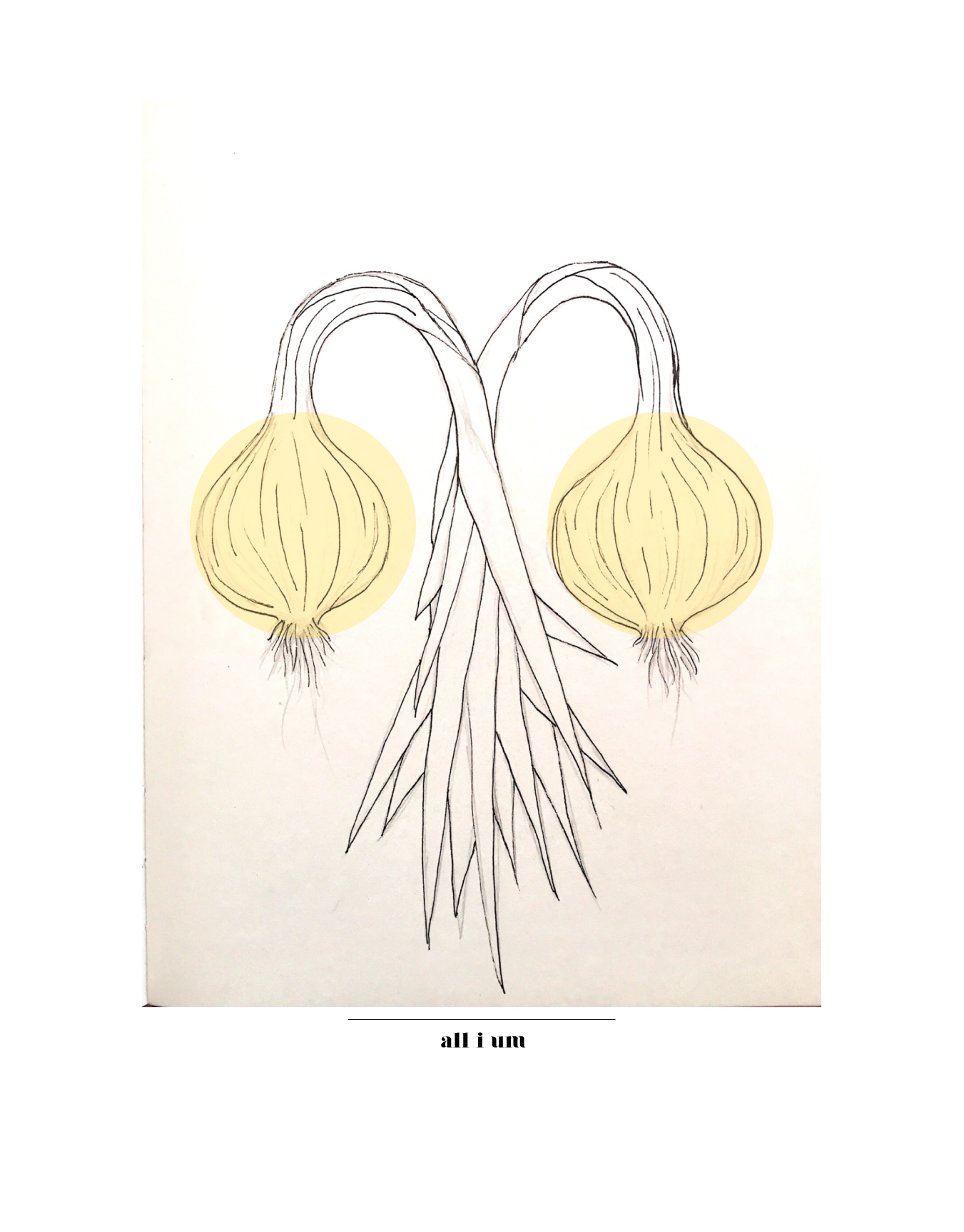 flora prints-01.jpg