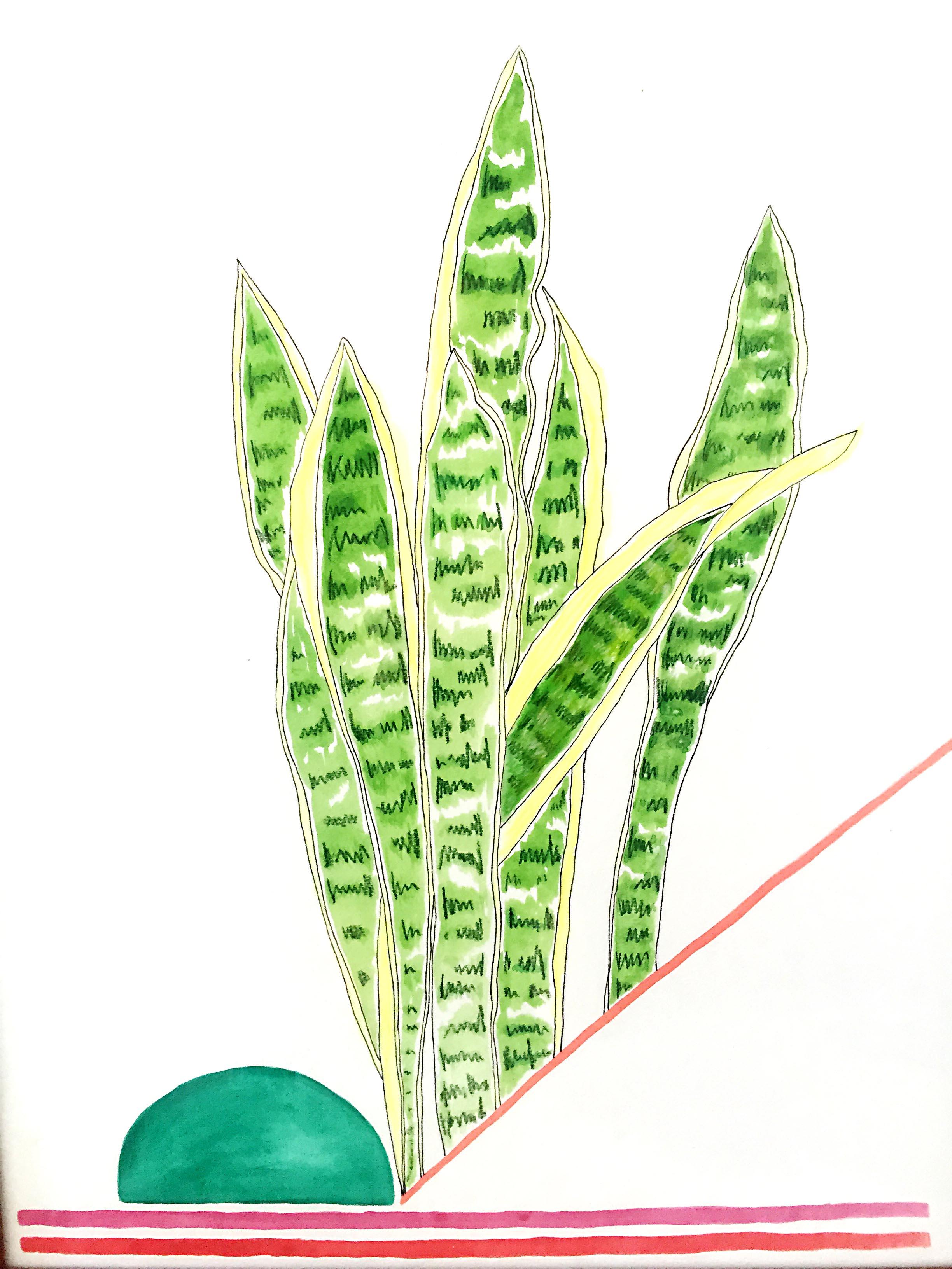 snake plants over beer.... \\ 18x24 mixed media on paper  #mysortofgreenthumb   >> S H O P <<