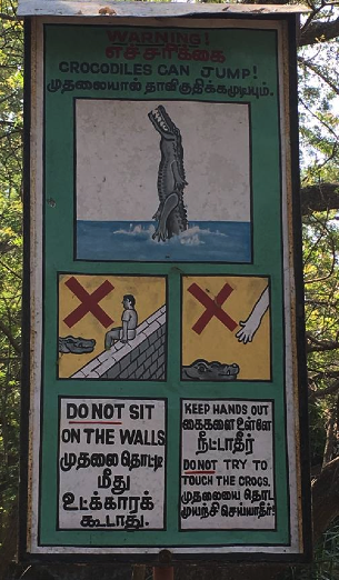 A photo of an actual sign taken by a non-imaginary friend in India. Presumably, she has been eaten by now.  I'll miss her.
