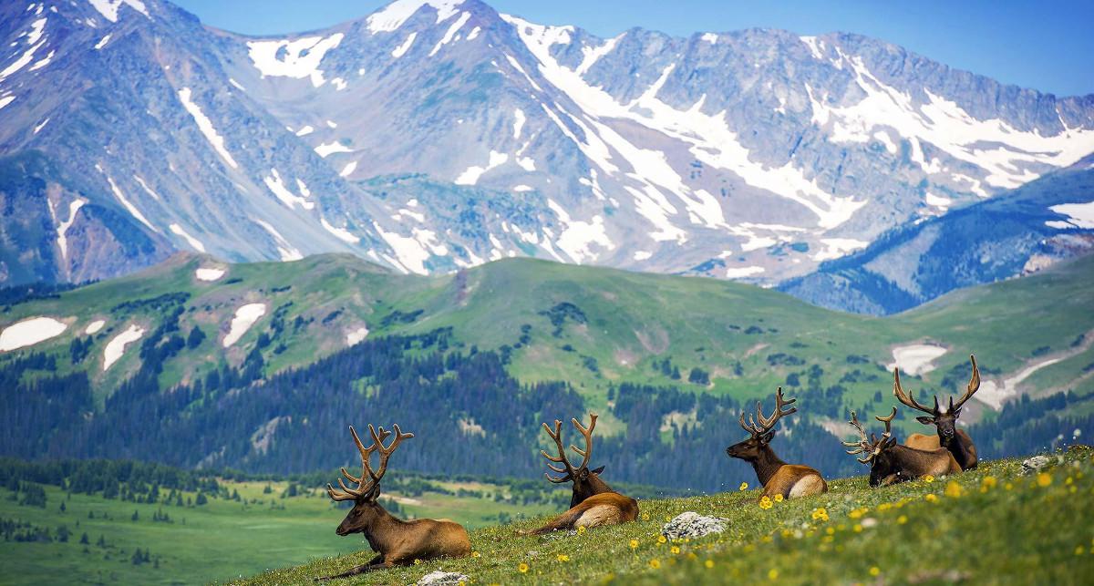 Colorado.2.jpg