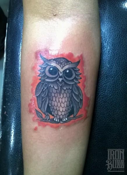 cartoon+cute+owl+bird+colour+tattoo+design+by+best+tattoo+artist+in+mumbai+subhojit+chakroborty+eric+jason+dsouza+from+best+tattoo+parlour+studio+in+india+iron+buzz+tattoos+mumbai.jpg