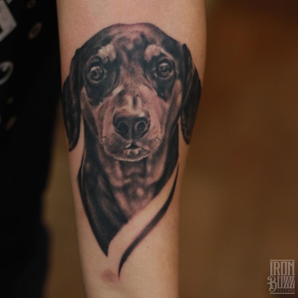 realistic+dog+dachshund+pet+animal+face+portrait+realism+3D+tattoo+design+arm+tattoo+by+best+tattoo+artist+in+bandra+mumbai+eric+jason+dsouza+from+best+tattoo+parlour+in+india+iron+buzz+tattoos+mumbai.jpg
