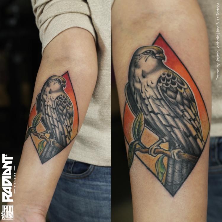 jayesh-falcon-tattoo copy.jpg