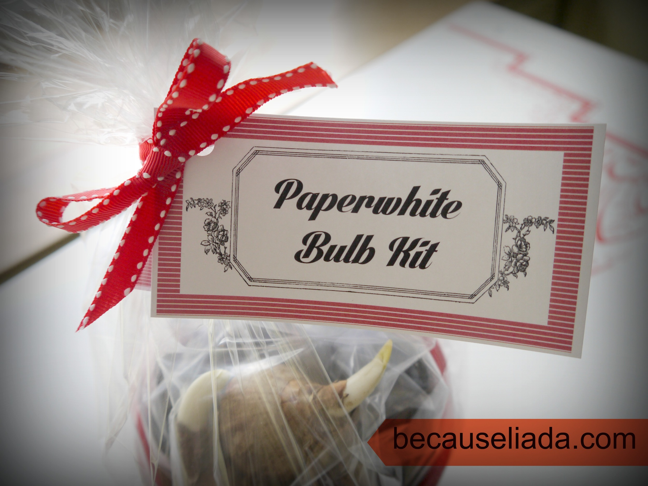 Printable Bulb Kit Tags