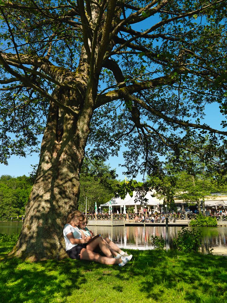 vegafoto-slottskogen