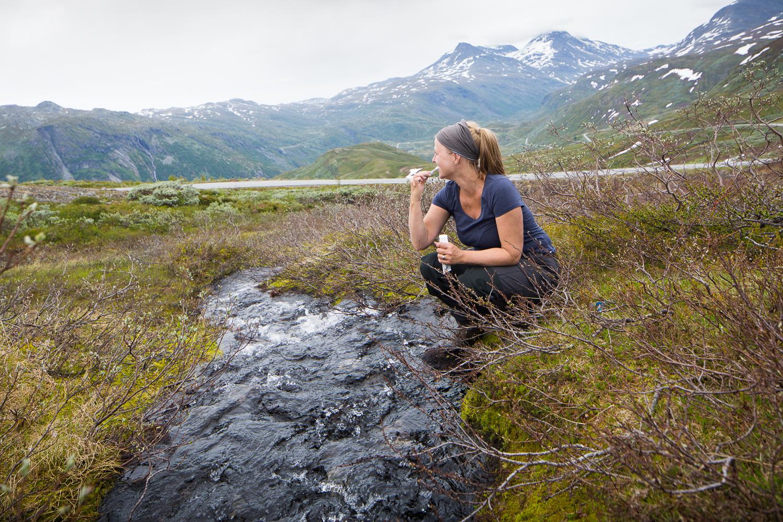 Vegafoto-Norge-Vandring-201606 (7 av 27).jpg
