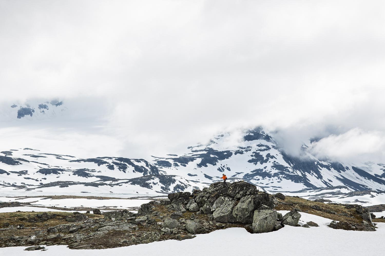 Vegafoto-Norge-Vandring-201606 (19 av 27).jpg