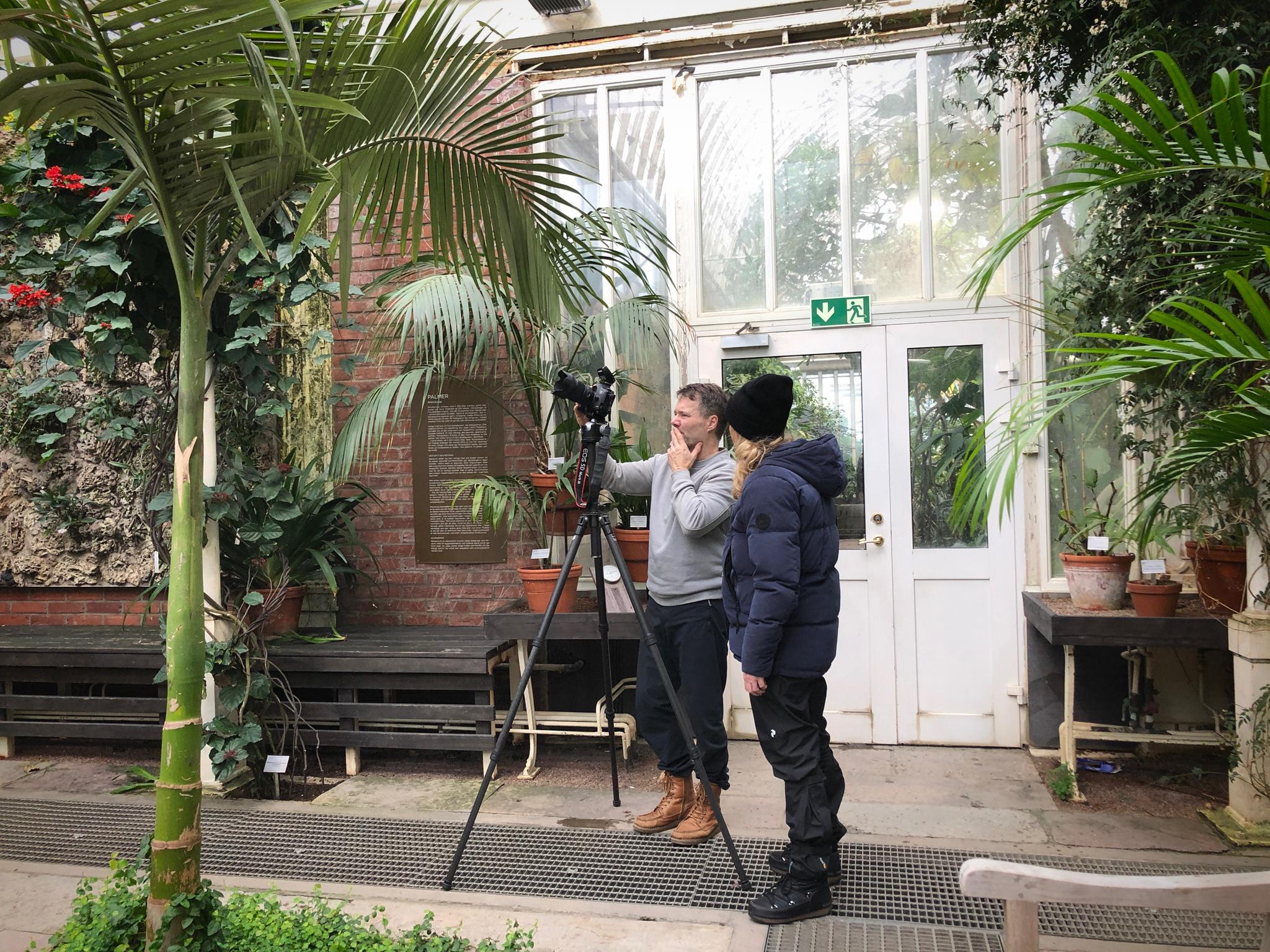 vegafoto ceasar crm palmhuset.jpeg