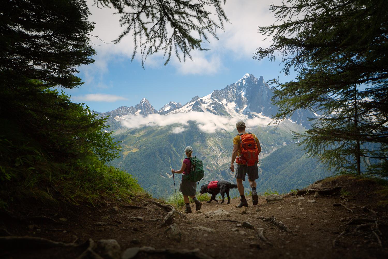 vegafoto-alsace-chamonix-zermatt-sommaren2019-05.jpg