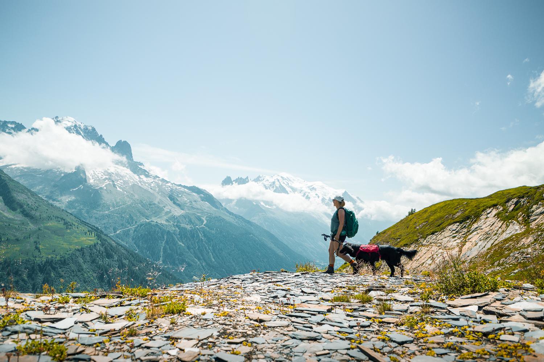 vegafoto-alsace-chamonix-zermatt-sommaren2019-09.jpg