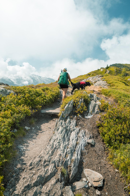 vegafoto-alsace-chamonix-zermatt-sommaren2019-12.jpg