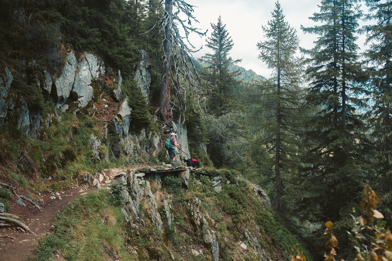 vegafoto-alsace-chamonix-zermatt-sommaren2019-33.jpg