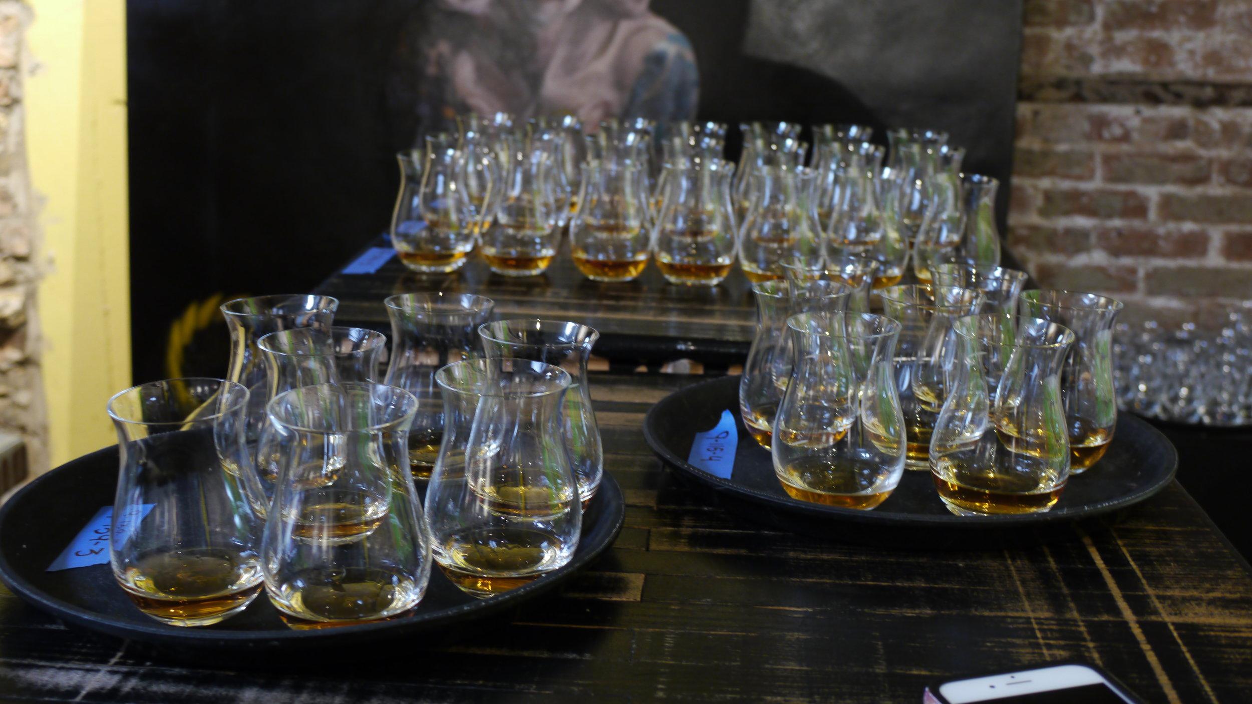 Blind whisky samples for the judges
