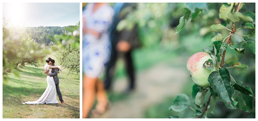 Maine Wedding Photographer Clark's Cove Farm & Inn Bride and Groom Orchard