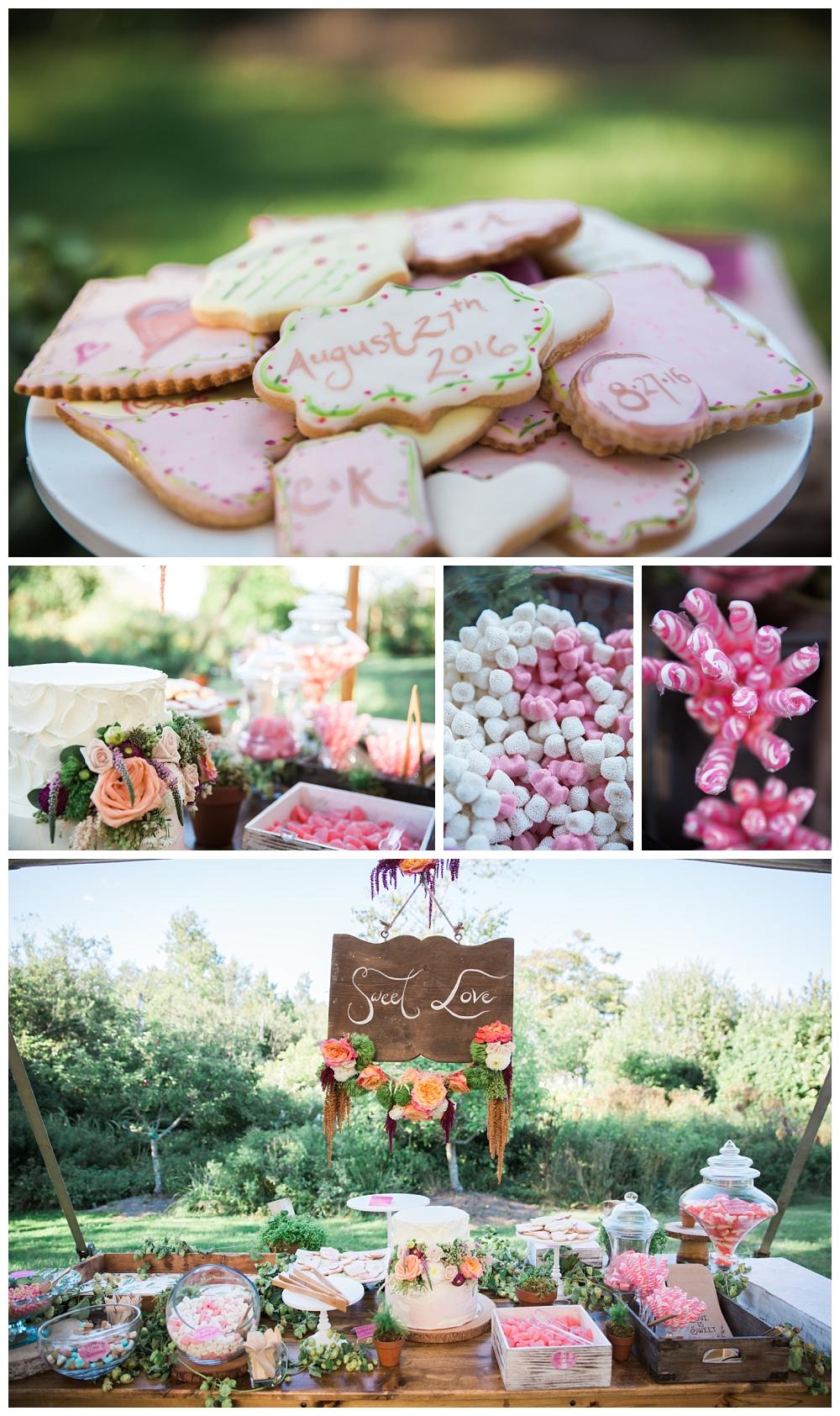 Maine Wedding Photographer The Bradley Inn New Harbor Reception Candy Bar Cake Table