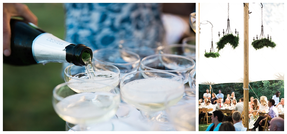 Maine Wedding Photographer The Bradley Inn New Harbor Reception toasts