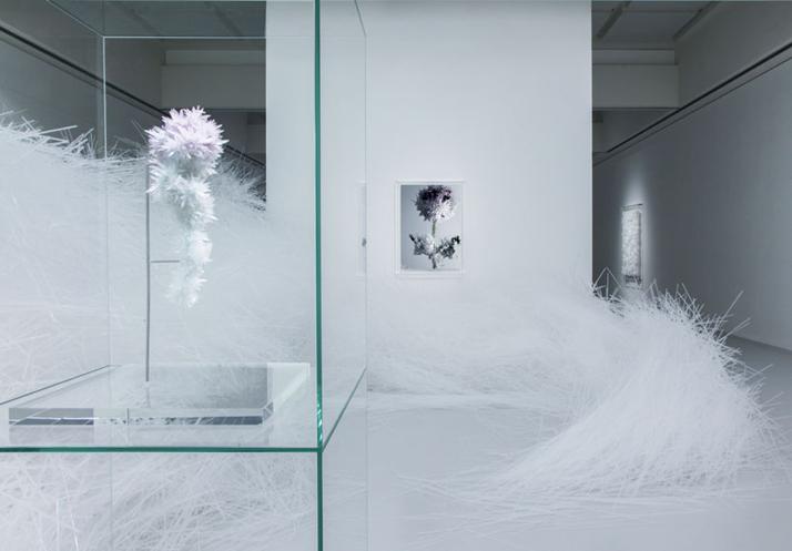 0-Crystallize-Tokujin-Yoshioka-Museum-of-Contemporary-Art-Tokyo-yatzer.jpg