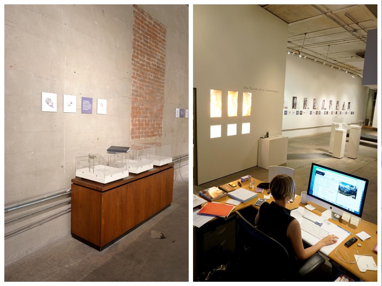 claudia endler designs gallery