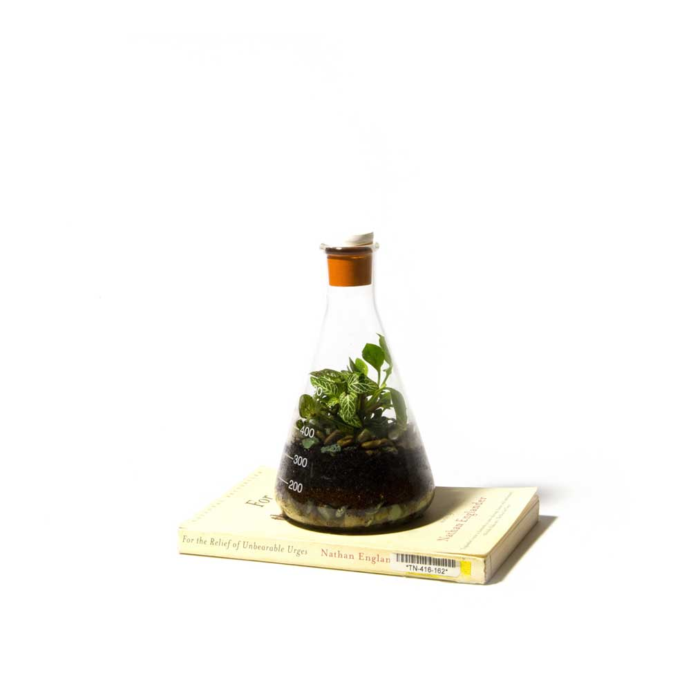 Terrarium-Low-Res-11.jpg