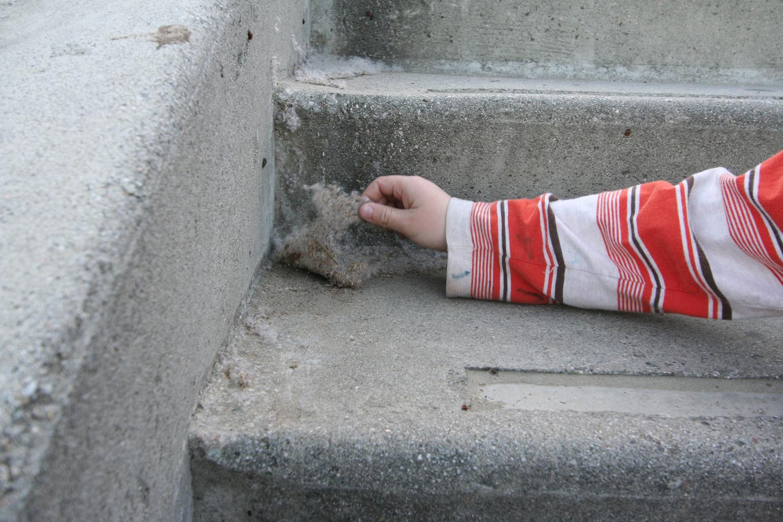 peeling a sheet from Cardiac Hill stairwell