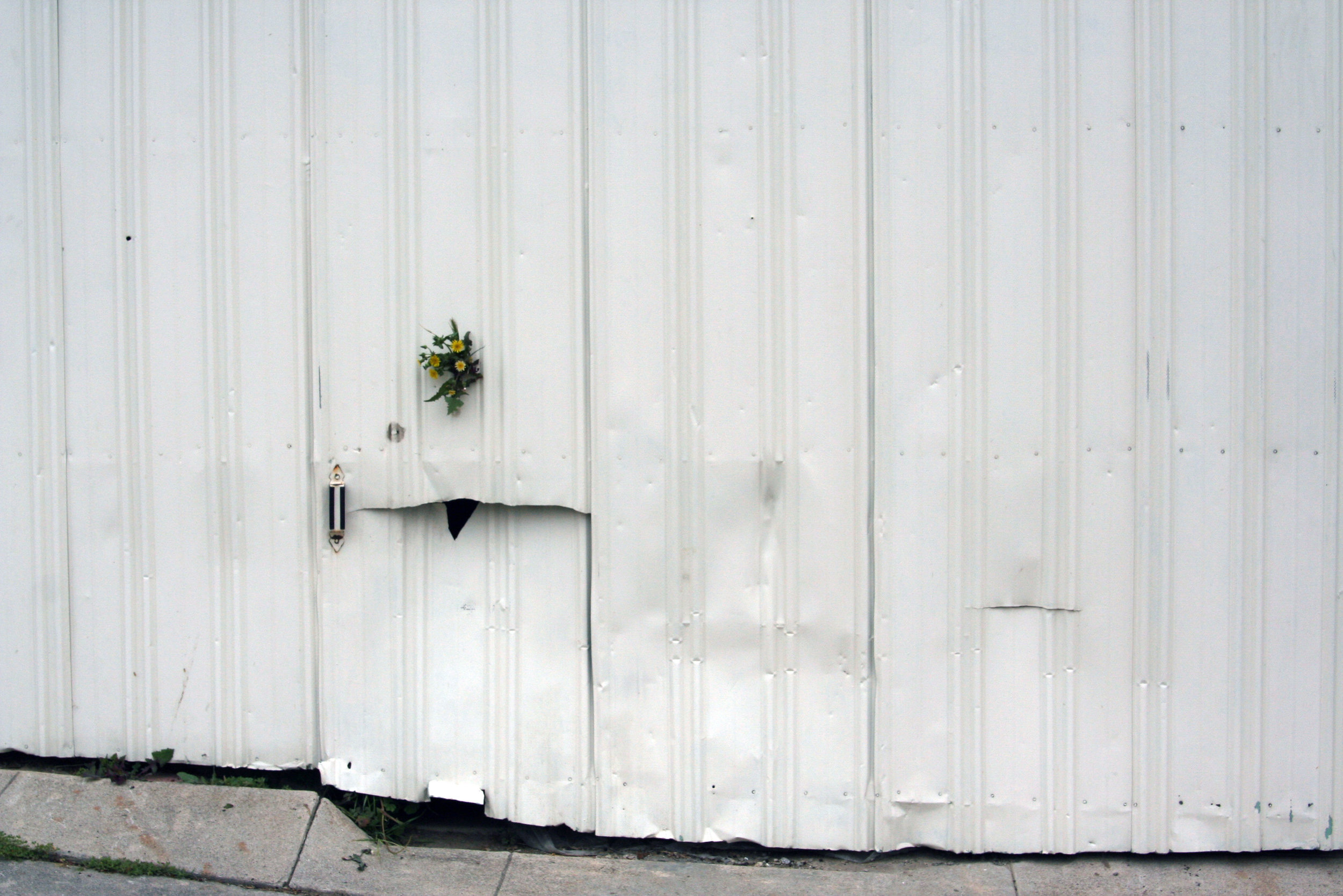 3914 Tampico Ave - flowers in garage hole (4) redo.jpg